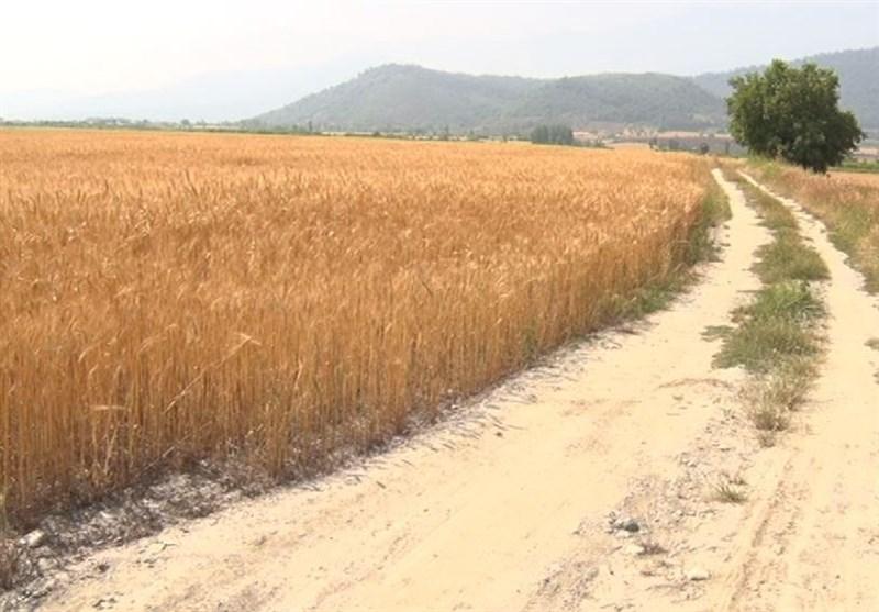جادههای بینمزارع در مناطق عشایری کوهدشت بازگشایی شد