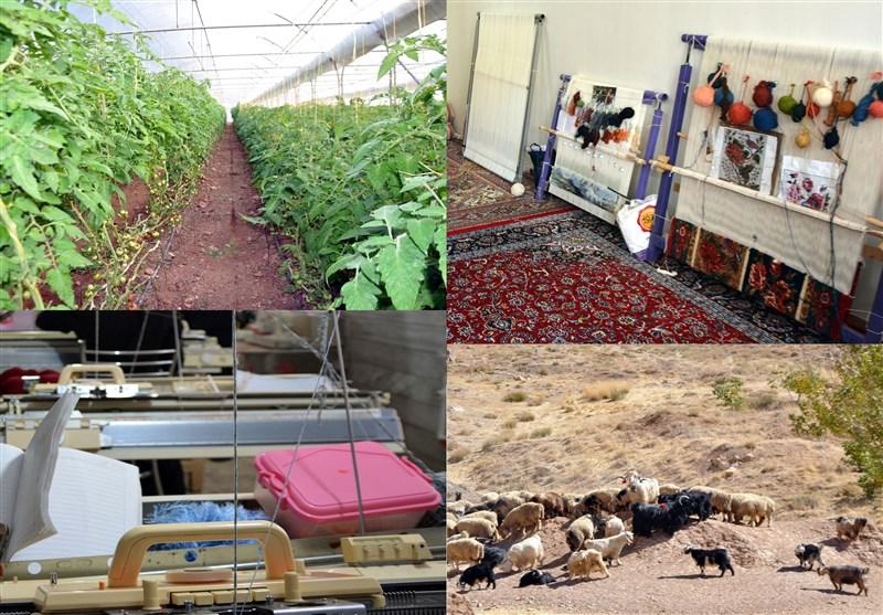 970 میلیارد ریال تسهیلات اشتغالزایی برای مددجویان استان بوشهر تخصیص یافت