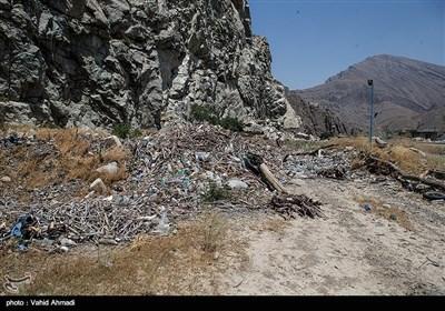 زباله های جدا شده از سطح آب