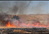 12 هکتار از مراتع لردگان در آتش سوخت/ پای قاچاقچیان زغال در میان است