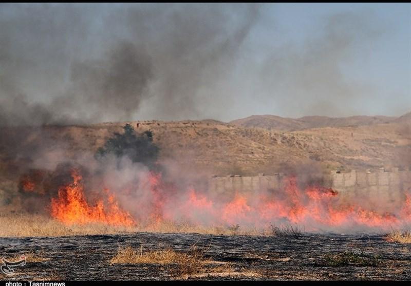 مهار آتشسوزی مزارع گندم در زنجان+ تصاویر