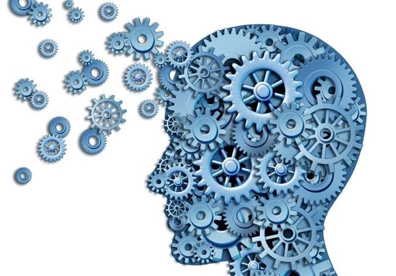 هستههای علمی بسیج میداندار و ایدهپرداز حوزه دانشبنیان باشند 