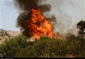 آتشسوزی در 13 شهرستان گیلان؛ 107 هکتار از جنگلهای استان دچار حریق شد
