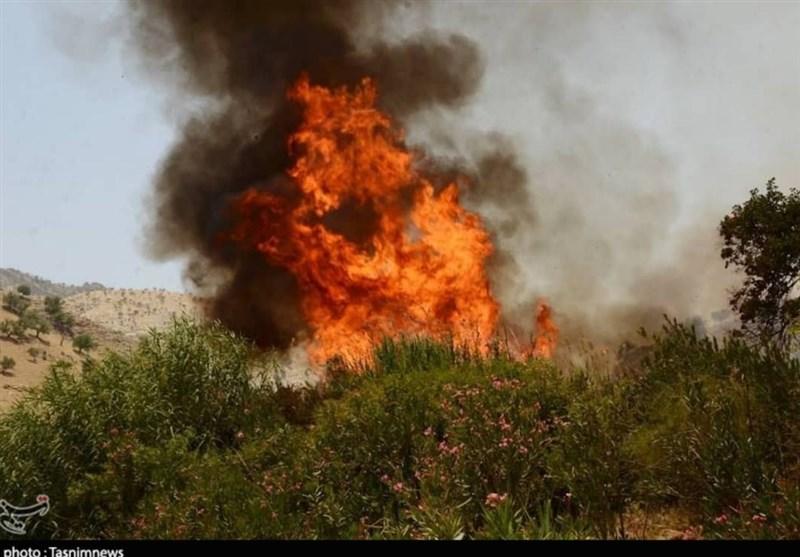 کهگیلویه و بویراحمد  آتشسوزی کوههای گچساران دوباره شعلهور شد/ 2 بالگرد آبپاش به کمک میآیند