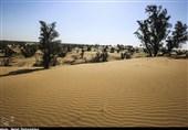روایت تسنیم از فرایند فزاینده بیابانزایی در کرمان / استانی که بیش از 11 برابر میانگین جهانی بیابان دارد
