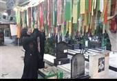 واکنش جالب خانواده شهید حزب الله از زیارت گلزار شهدای تهران+عکس