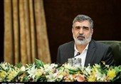 Iran Urges IAEA to Avoid Dangerous Precedent