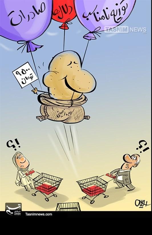 کاریکاتور/ صعود سیبزمینی از سبد خانوار!!!