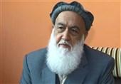 مصاحبه| آمریکا درباره موارد قابل اجرا با طالبان مذاکره کند/ تلاشهای صلح بدون دولت افغانستان نتیجه ندارد