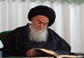 آیت اللہ سید محمد حسینی شاہرودی انتقال کرگئے