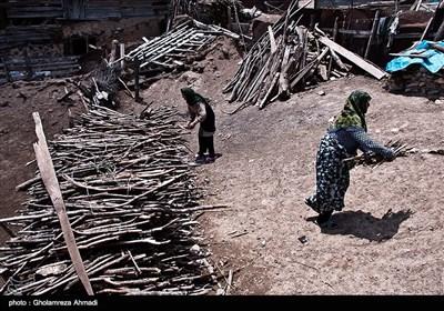 در این روز های گرم بدلیل وسعت مزارع گندم بیشتر مران دوشادوش یکدیگر کار می کنند و زنان و کودکان نیز سهمی مهم برای پایان فصل درو در کنار سایر مسئولیت ها دارند.پخت غذا و مراقبت و چرای دام در طول روز.