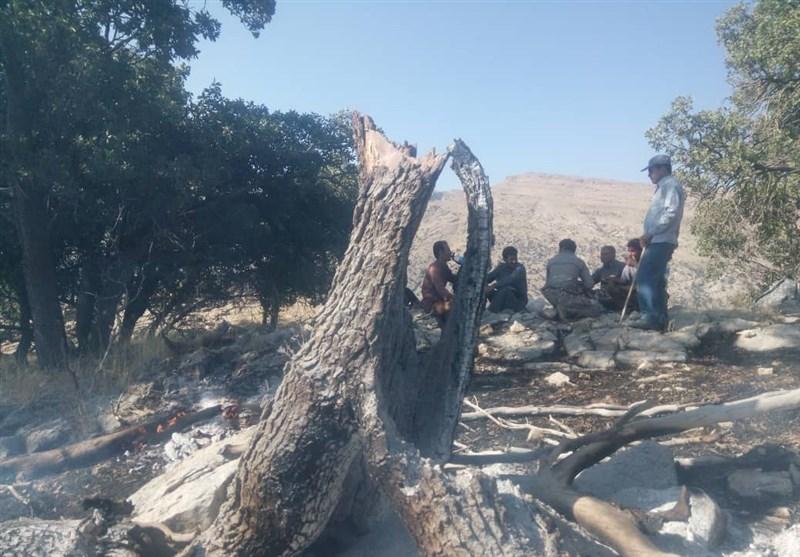 آتش بیرحمانه مراتع و جنگلهای طسوج چرام را سوزاند + تصاویر
