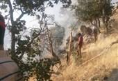 شعلههای آتش منطقه حفاظت شده چهل پا مهار شد
