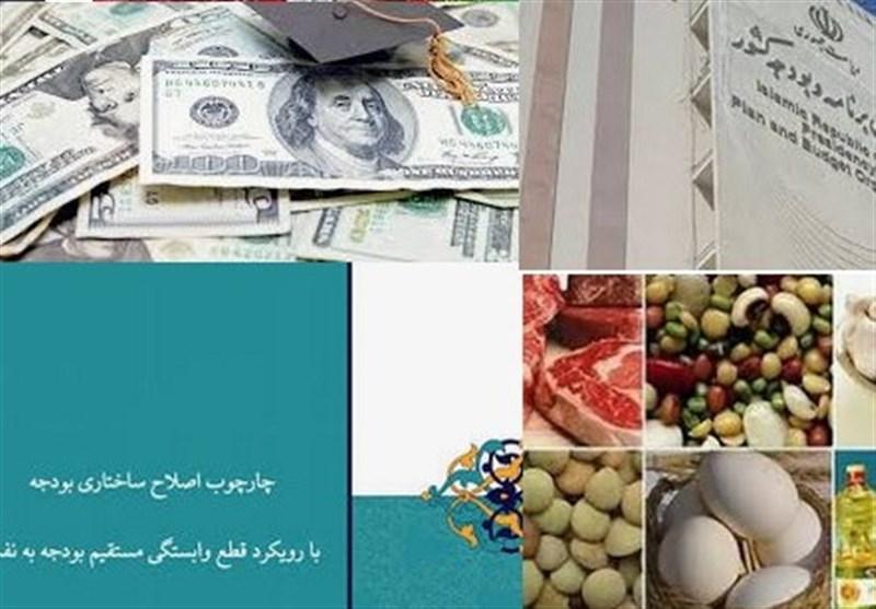 نقدی بر گزارش اصلاح ساختار بودجه/ درآمد اصلاح تخصیص ارز دولتی کالاهای اساسی، صرف جبران کسری بودجه میشود؟