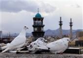 اصفهان| اعزام مددجویان و زنان سرپرست خانوار کمیته امداد به سفرهای زیارتی