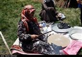 جشنواره توانمندیهای عشایر اردبیل برگزار میشود