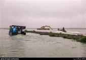 سازمان محیط زیست وضعیت حریم دریا و تالاب انزلی را مشخص کند