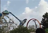 Two Killed, Dozens Injured in India's Theme Park Ride Accident (+Video)
