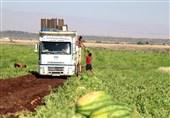 """اجرای طرحی برای محرومیتزدایی در بلوچستان / آیا زمینهای کشاورزی """"باهوکلات"""" به ثمر نشست؟ + فیلم"""