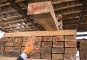 افزایش کشفیات قاچاق چوب در گیلان؛ 893 پرونده تخلف در استان تشکیل شد