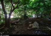 """ایران: صوبہ فارس کی جنت نظیر وادی """"تنگ براق"""" کے مناظر کی تصویری جھلکیاں"""