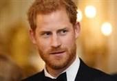 برطانوی شہزادے کا پاکستان کو خراج تحسین