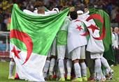 فوتبال جهان| حمایت مصر از هواداران الجزایری در فینال جام ملتهای آفریقا