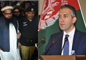 واکنش افغانستان به دستگیری سرکرده گروه تروریستی «جماعت الدعوه» در پاکستان