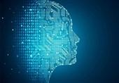 Human Infants' Behavior Inspires Technique to Improve Machine Learning