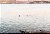 وزیر نیرو برای حل مشکل تخصیص آب سدهای کردستان به وعده خود عمل نکرد