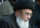 دہشت گرد عناصرکو ملک میں انتشارپھیلانے سے روکا جائے، حامد موسوی