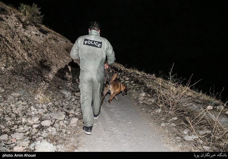 استفاده از سگهای موادیاب در عملیات دستگیری خردهفروشان موادمخدر
