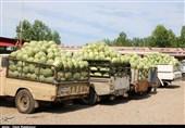 مسئولان آذربایجان غربی قدمی در مورد امحای 8 هزار تن هندوانه توسط دولت ترکیه برنداشتند