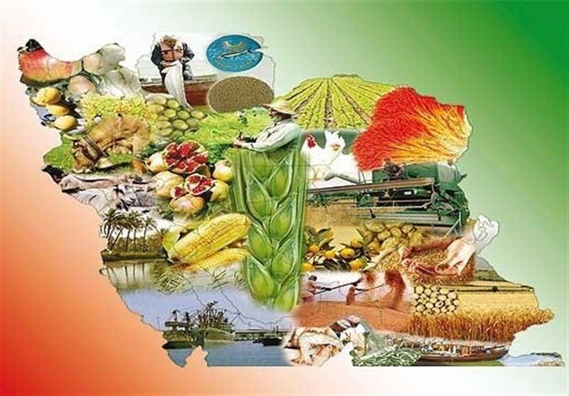 استان مرکزی با کمبود سردخانه نگهداری میوه مواجه است