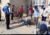 اردوی جهادی دانشآموزان در مناطق سیلزده آققلا+ تصاویر