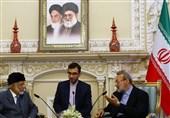 لاریجانی: نمیدانیم دزدی کشتی ایرانی چه فایدهای دارد؟