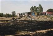 گزارش تصویری تسنیم از آتشی که به جان باغستان قزوین افتاد