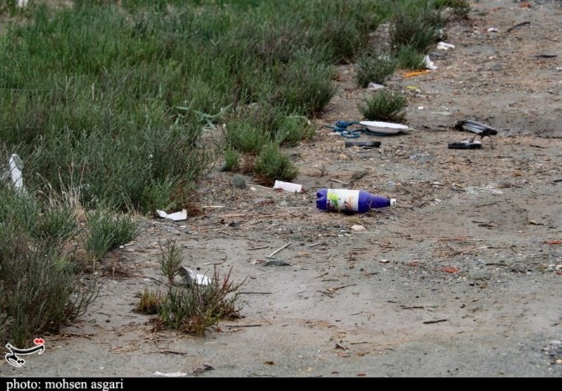 نفسهای خلیج گرگان به شمارش افتاد/ مرگ در یکقدمی تنها خلیج دریای خزر+ تصاویر