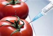 ابراز نگرانی رئیس کمیسیون کشاورزی مجلس از واردات محصولات تراریخته؛ قانون ایمنی زیستی مورد بازنگری صورت میگیرد