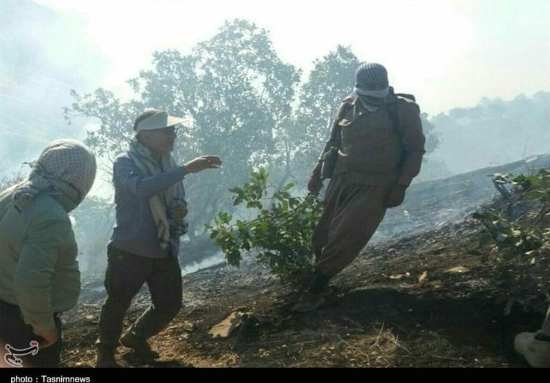 مردم با دستهای خالی و امکانات اندک آتشسوزی مراتع چوار را مهار کردند+ عکس