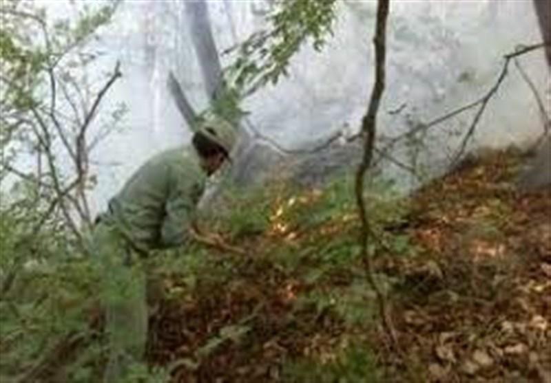 برای حفاظت از جنگلهای کشور کمبود جنگلبان داریم