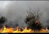 آذربایجان شرقی| کانون اصلی آتش سوزی جنگلها و مراتع ارسباران پس از 5 روز مهار شد