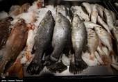 تکمیل پروژههای پرورش ماهی ظرفیت تولید این آبزی در استان بوشهر را افزایش میدهد