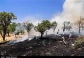  300 هکتار از اراضی و جنگلهای خداآفرین درمنطقه حفاظت شده ارسباران طعمه حریق شد