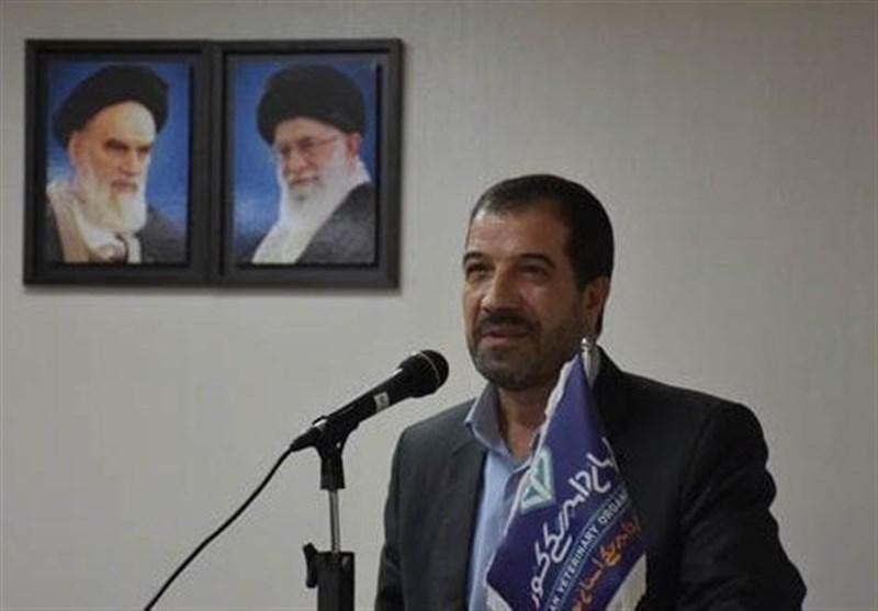 گزارشی از تب کریمه کنگو در تهران نداریم/ پیش بینی ذبح 30 هزار راس دام در عید قربان