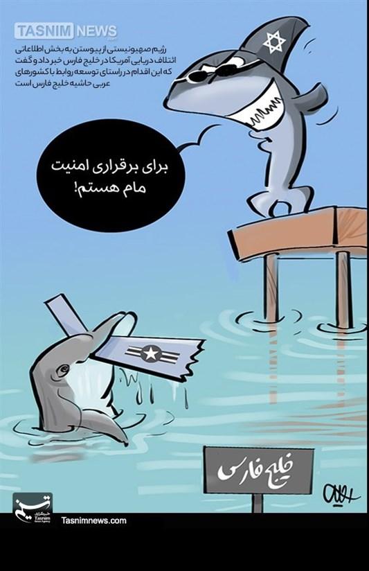 کاریکاتور/ خیال کوسه نادان برای حضور در خلیج فارس!