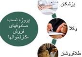 گفتگو|اعلام اسامی اصناف مشمول نصب سامانه فروش تا پایان شهریور/ماجرای تمدید مهلت ثبت نام پزشکان