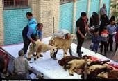 15 قربانگاه جهت انجام فریضه قربانی در تهران فعال است