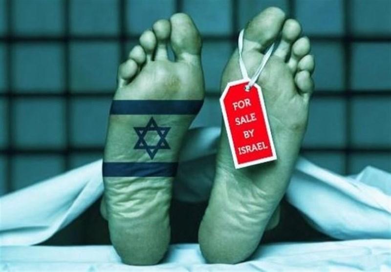 گزارش| اسرائیل بهشت تجارت اعضای بدن انسان؛ مجاز بودن کشتن ملتها در ایدئولوژی صهیونیستی