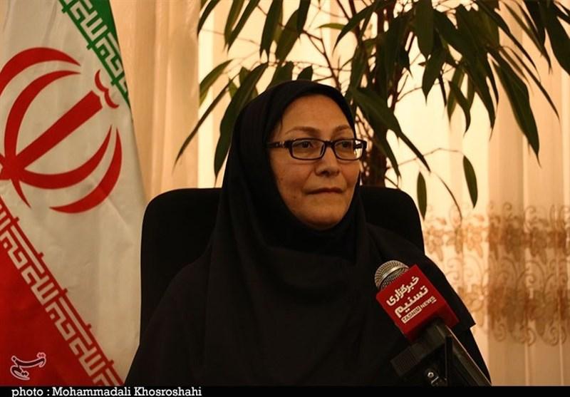 کرمان غبارخیزترین استان کشور است/ راهاندازی دستگاه پایش کیفیت هوای شهرستانهای انار و راور تا پایان سال
